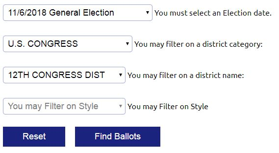 Sample Ballot Search - Screenshot